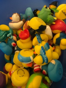 The ducks at Sugar n' Spice