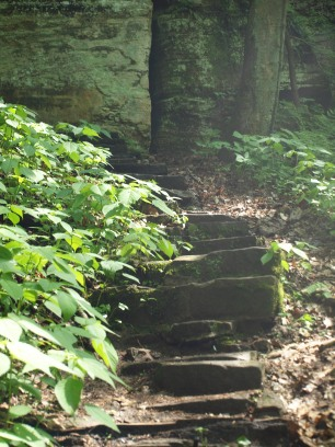 steps in forest made of stone